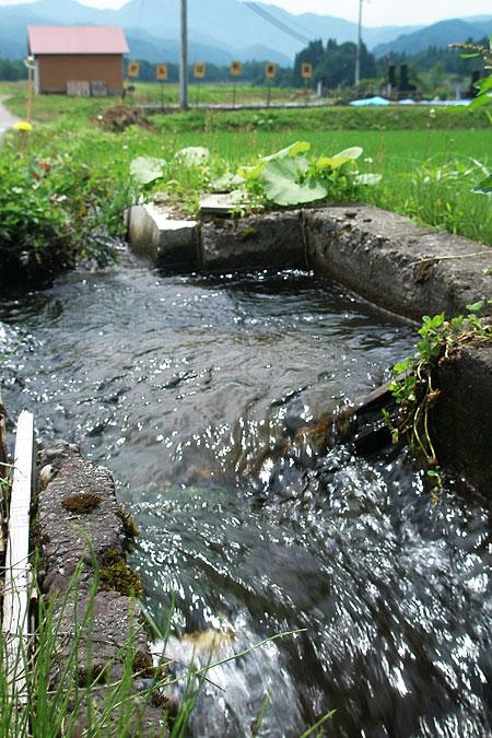 栄村の農業用水路